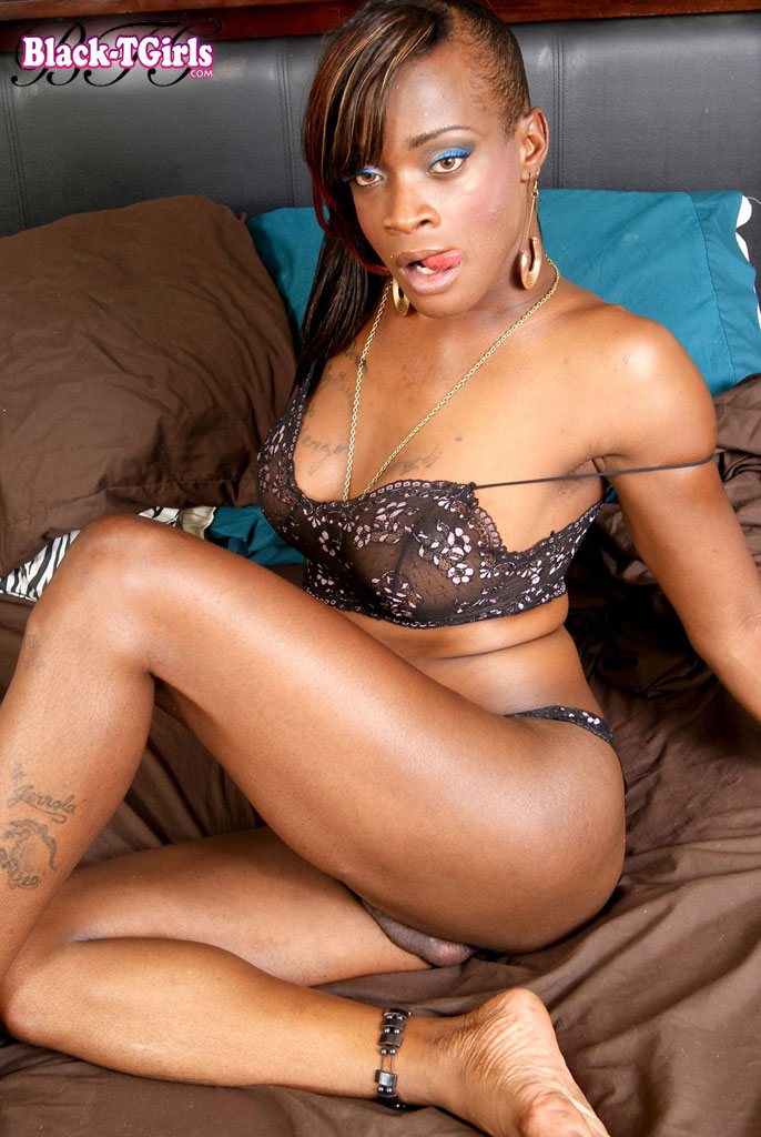 Black transexual porn stars