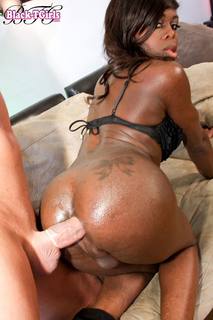 Big black ass transgender
