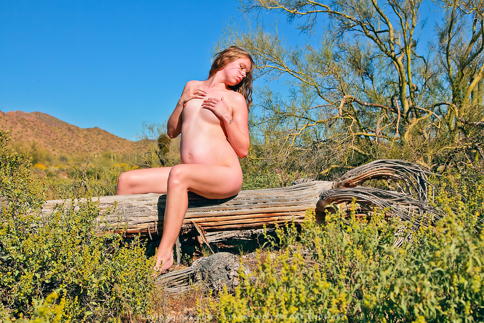 Forty acre nudist club