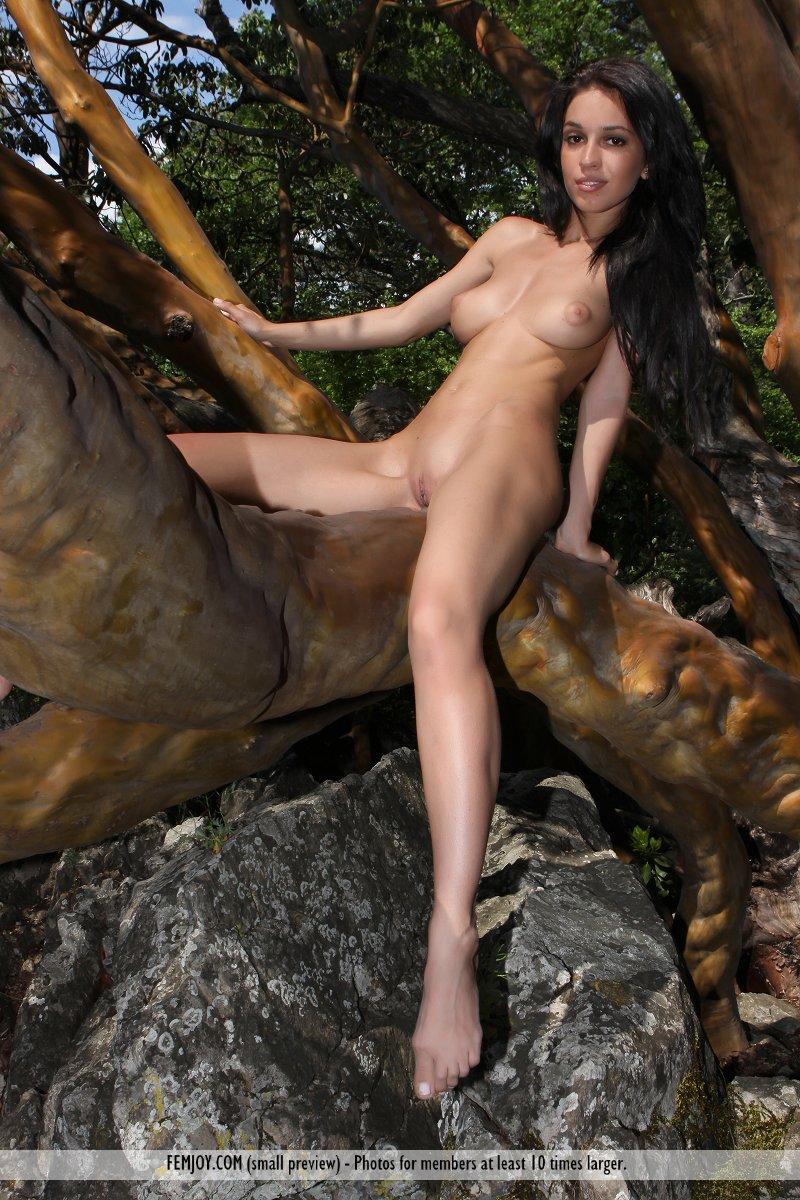 the girls next door nude sex