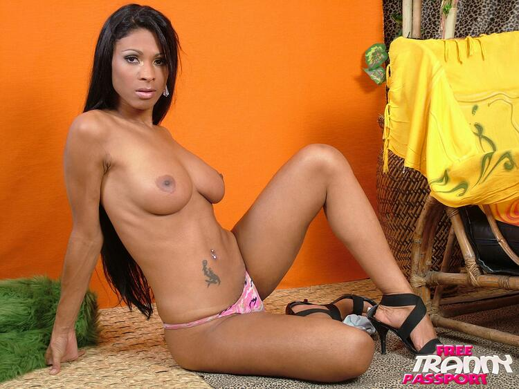 Shemale Andreia De Oliveira jerks her
