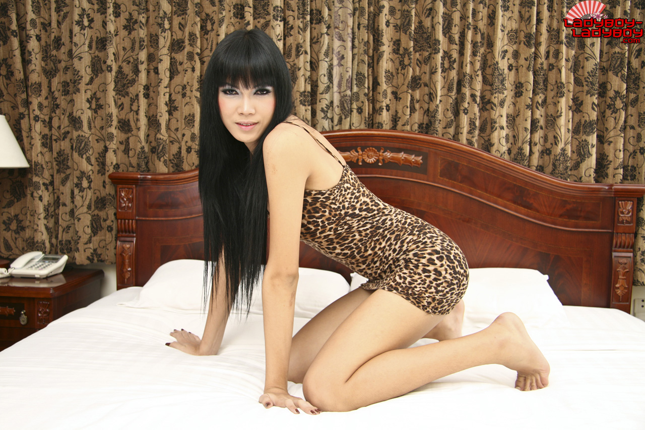 Beautiful long haired ladyboy is sucking her mans thick meat 1