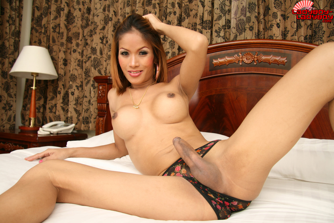 sweet brunette and black babes melissa monet and wendy breeze fi