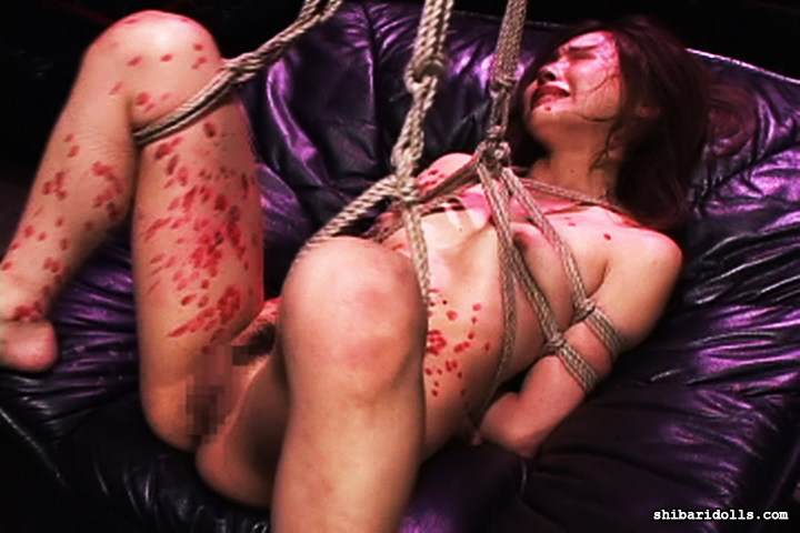 For japanese breast rope bondage