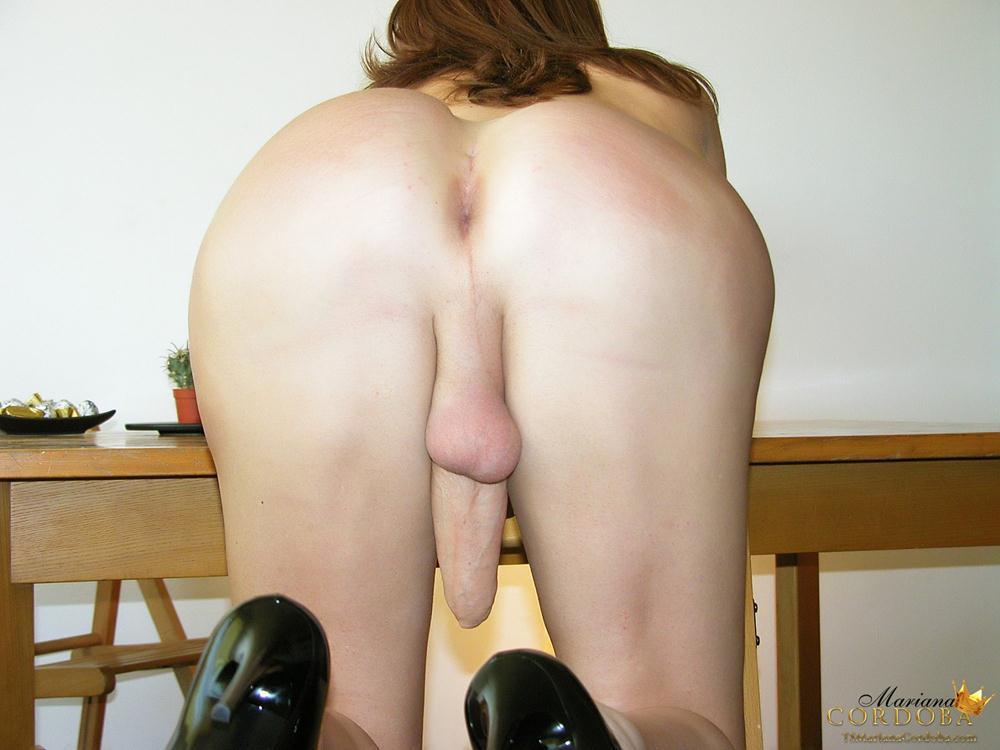 nude cock fucking