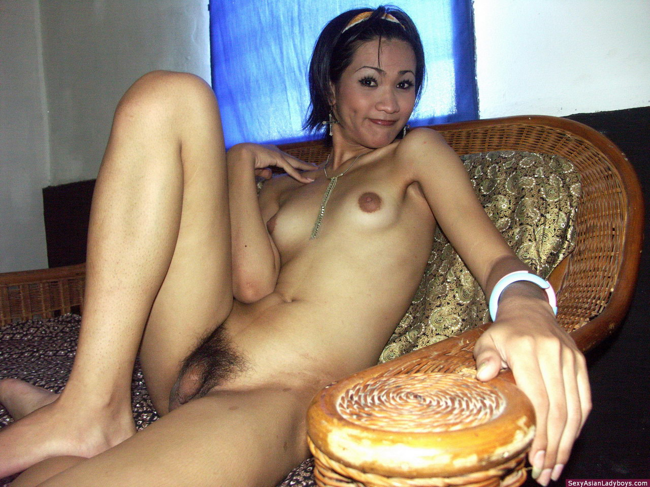 Southeast asian trannys